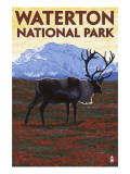 Waterton National Park, Canada - Caribou & Mountain Posters by  Lantern Press