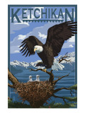 Bald Eagle & Chicks - Ketchikan, Alaska Poster by  Lantern Press
