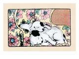Napping Fox Terrier Dogs Prints by Julia Dyar Hardy