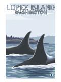Lopez Island, WA - Orca Fins Prints by  Lantern Press