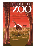 Giraffe Sunset - Oregon Zoo Prints