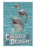 Edisto Beach, South Carolina - Dolphins Posters