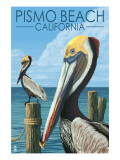 Pismo Beach, California - Pelicans Art