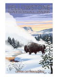 Bison Snow Scene - Yellowstone National Park Prints