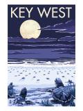 Key West, Florida - Sea Turtles Hatching Prints by  Lantern Press