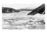Alaska - View of Taku Glacier Kunstdruck