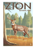 Zion National Park, UT - Deer Posters