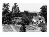 Santa Rosa, California - View of a Burbank Garden Prints by  Lantern Press