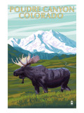 Poudre Canyon, Colorado - Moose Print by  Lantern Press