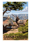 Grand Canyon National Park - Elk & Point Imperial Posters by  Lantern Press