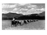 Idaho - Fish Planting by Pack Train near Sandpoint Prints