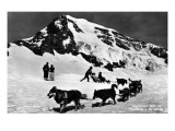 Switzerland - Dogsledding at Jungfraujoch Poster von  Lantern Press