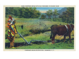 North Carolina - Cherokee Farmer with Ox-Drawn Plow Prints by  Lantern Press