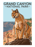 Grand Canyon National Park - Mountain Lion Prints by  Lantern Press