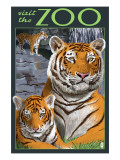 Visit the Zoo - Tiger Family Prints by  Lantern Press