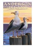 Anderson Island, WA Sea Gulls Posters by  Lantern Press