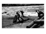 Idaho - Priest River Log Run Scene Poster by  Lantern Press
