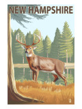 New Hampshire - White-Tailed Deer Posters by  Lantern Press