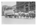 Borden Dairies Enter a Horse Drawn Wagon In the Work Horse Parade Prints