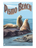Pismo Beach, California - Sea Lions Poster by  Lantern Press