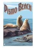 Pismo Beach, California - Sea Lions Poster