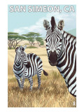 San Simeon, CA - Zebra Scene - Posters by  Lantern Press