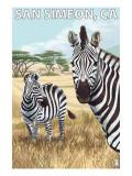 San Simeon, CA - Zebra Scene - Prints