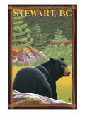 Stewart, BC - Bear in Forest Posters