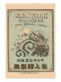 Raw Silk Riujiokan Print