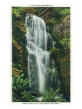 Big Basin, California - Berry Creek Falls Scene Giclée-Premiumdruck von  Lantern Press