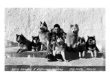Big Delta, Alaska - Mary Hansen and Siberian Huskies Prints by  Lantern Press