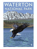 Waterton National Park, Canada - Eagle Fishing Posters av  Lantern Press