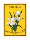 Four Irises Poster