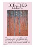 Birches Affiche
