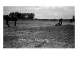 South Dakota - Calf Roping at Black Hills Round-Up Affiche par  Lantern Press