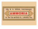 Ammonia Prints