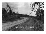Texas - Observatory Drive Print