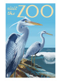 Blue Heron - Visit the Zoo Posters by  Lantern Press