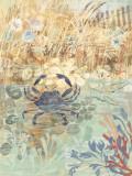 Floral Frenzy Coastal III Posters by Alan Hopfensperger