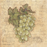 Grapes IV Lámina por Stephanie Marrott