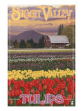 Skagit Valley Tulips Prints by  Lantern Press