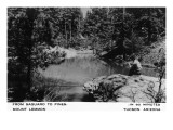Mt Lemmon, Arizona - From Saguaro to Pines, Man Fishing Prints