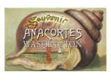 Anacortes, Washington - Shells & Sailboat Souvenir Posters by  Lantern Press