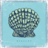 Scallop Print by Stephanie Marrott