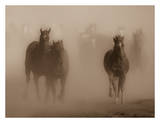 Ghost Horses Prints by Gary Crandall