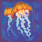 Jelly Fish Poster by Scott Westmoreland