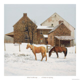 Four Weeks Until Spring Poster by Peter Sculthorpe