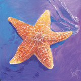 Starfish Prints by Scott Westmoreland