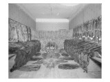 Room Full of Fur Pelts, Early 20th Century Giclee Print by Asahel Curtis