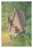 Bird House Posters by Bob Henley